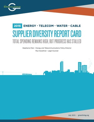 2015 Supplier Diversity Report Card